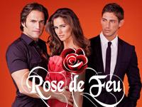 Rose de Feu